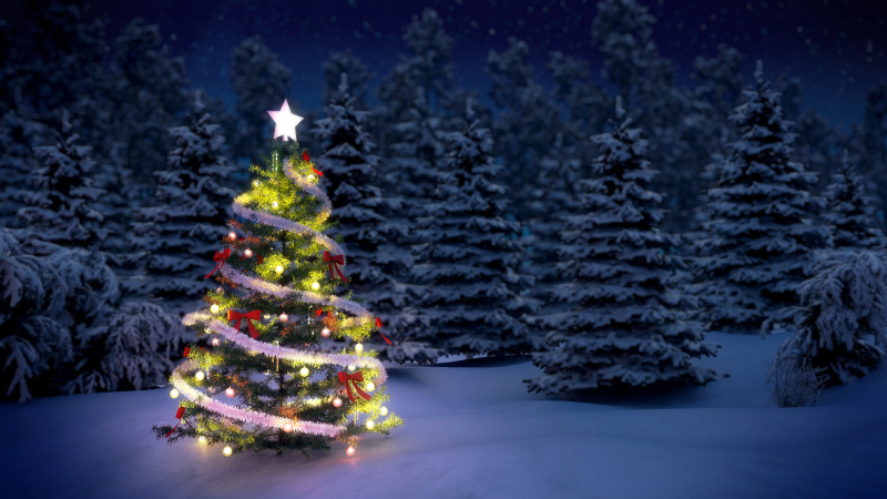 圣诞树2.jpg